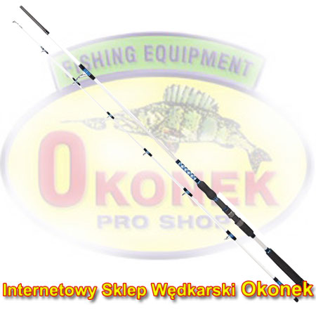 Dragon Wędka Boat Master Offshore Jig